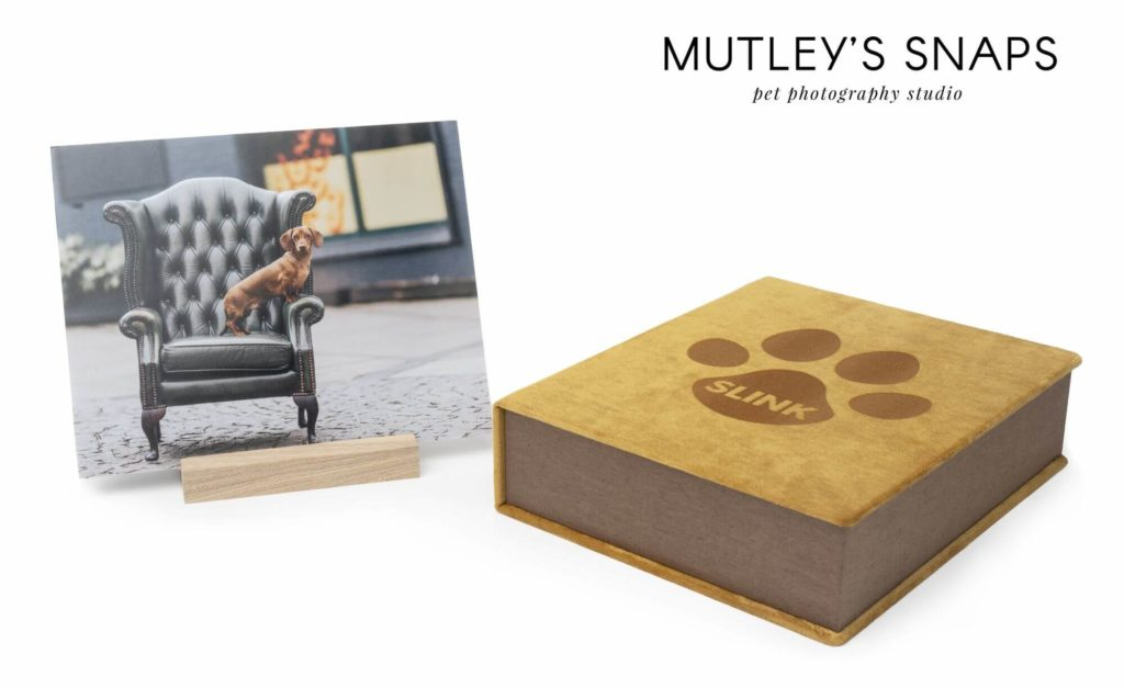 Photo products for pet photographers